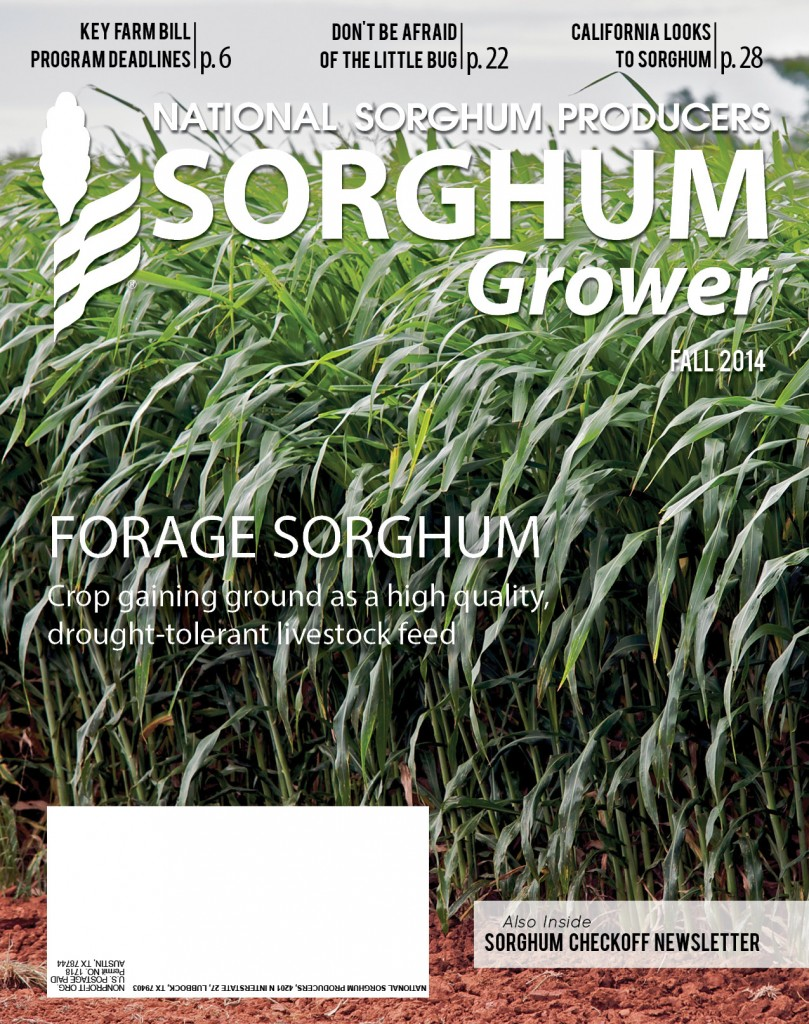 Sorghum Grower FALL 2014_p23