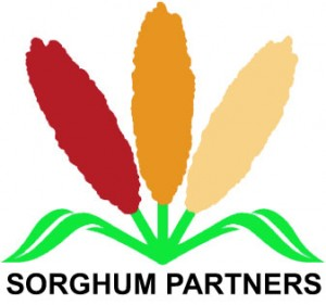 SorghumPartners
