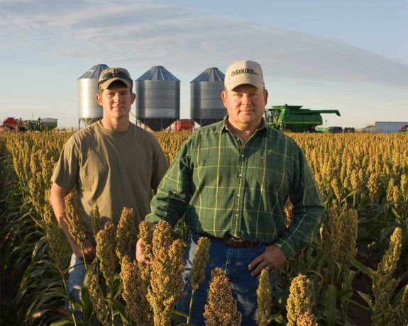 National Sorghum Producers Mission And History Voice Of The Industry