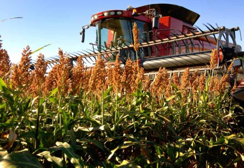 National Sorghum Producers Leadership Development What Youll Gain