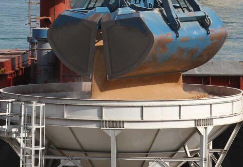 National Sorghum Producers Sorghum 101 Uses Exports