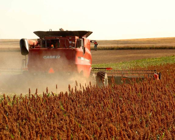National Sorghum Producers Industry Partners About