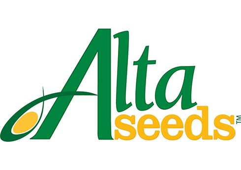 AltaSeeds 4c Web